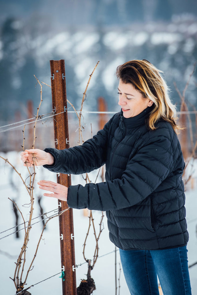 French winemaker Alexandrine Roy looking at vines on a snowy afternoon at Phelps Creek Winery in Hoodriver, Oregon.